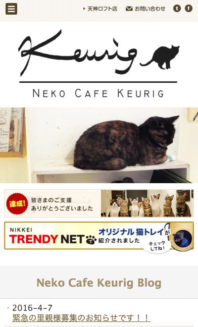 福岡の猫カフェ キューリグさんのスマホサイト